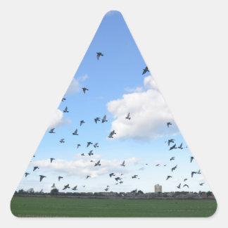 Flock Of Pigeons Sticker