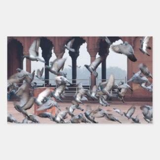 Flock of pigeons rectangular sticker