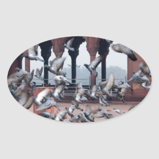 Flock of pigeons stickers