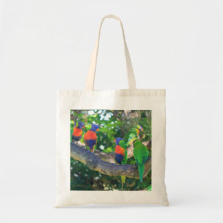 Flock of Rainbow lorikeets on a branch of a Tree Budget Tote Bag