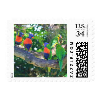 Flock of Rainbow lorikeets on a branch of a Tree Postage Stamp