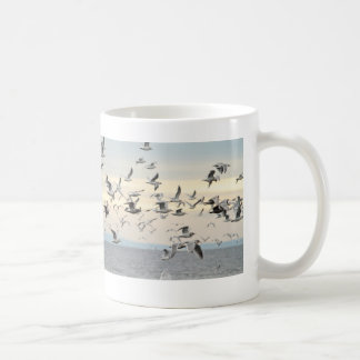 Flock of Seagulls Photo Mugs