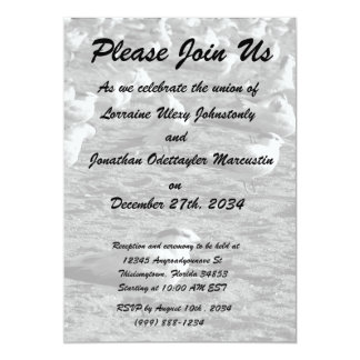 Flock of seagulls standing on florida beach 5x7 paper invitation card