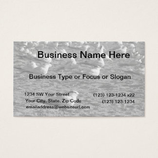 Flock of seagulls standing on florida beach business card