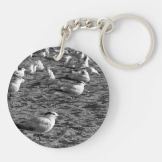 Flock of seagulls standing on florida beach Double-Sided round acrylic keychain