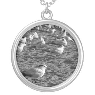 Flock of seagulls standing on florida beach round pendant necklace
