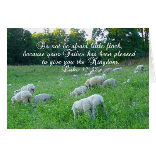 Flock of Sheep-Bible verse. Card