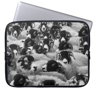 Flock of Sheep Black and White Computer Sleeve