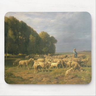 Flock of Sheep in a Landscape Mouse Pad