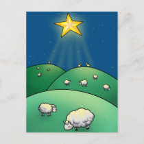 Flock of sheep under Christmas Star Holiday Postcard