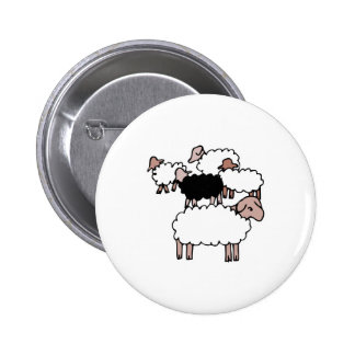flock of sheep with black sheep pinback button