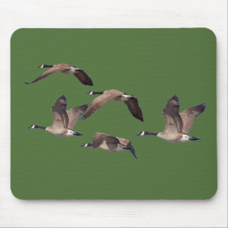 Flock of wild geese mouse pad
