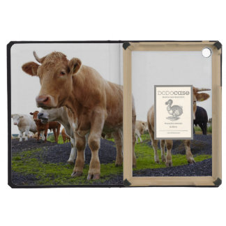 Flock of young white cows in Scottish field iPad Mini Cover