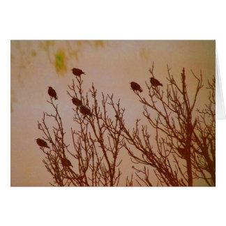 Flock Together Card