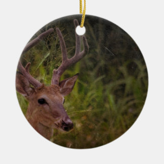 Floirda Buck Ceramic Ornament