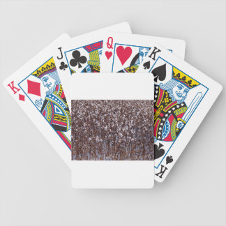 Flooded Cotton Crop Field Bicycle Playing Cards
