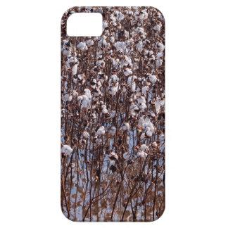 Flooded Cotton Crop Field iPhone SE/5/5s Case