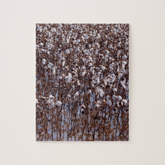 Flooded Cotton Crop Field Jigsaw Puzzle