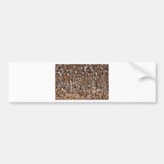 Flooded Cotton Gossypium Field Bumper Sticker