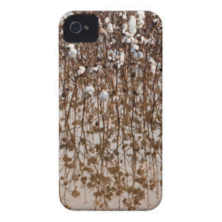 Flooded Cotton Gossypium Field iPhone 4 Cover