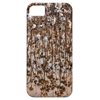 Flooded Cotton Gossypium Field iPhone SE/5/5s Case
