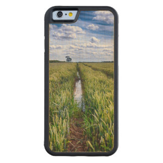 Flooded Tractor Tracks Carved Maple iPhone 6 Bumper Case