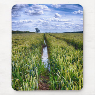 Flooded Tractor Tracks Mouse Pad