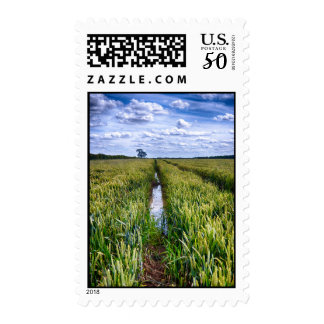 Flooded Tractor Tracks Postage