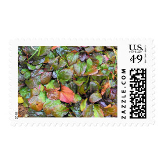 Floor Cover Postage