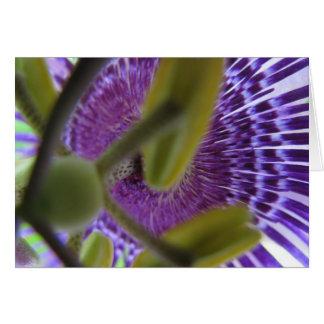 flor 009 de la pasión tarjeta de felicitación