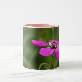 Flor 12 tazas de café