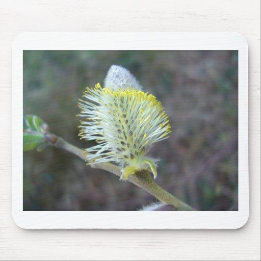 Flor 1 del árbol tapete de ratón