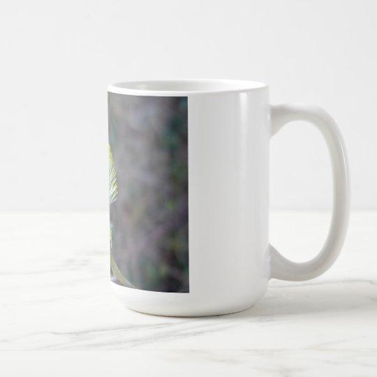 Flor 1 del árbol taza de café