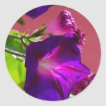 Flor 1 etiqueta redonda