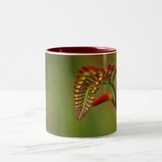 Flor 2 tazas