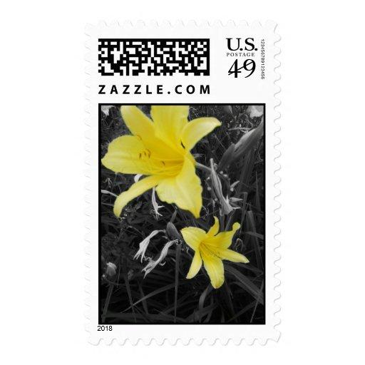 flor 3 franqueo