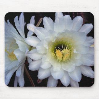 Flor 4355 Mousepad del cactus Tapete De Ratones