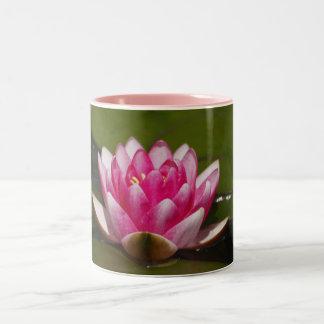 Flor 4 tazas de café