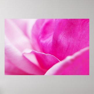 Flor abstracta de las rosas fuertes póster