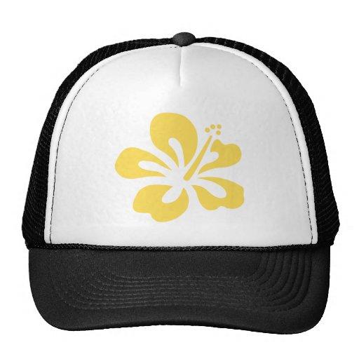 flor amarilla 3 del hibisco gorras