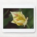 Flor amarilla alfombrilla de raton
