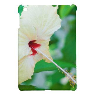Flor amarilla bonita del hibisco