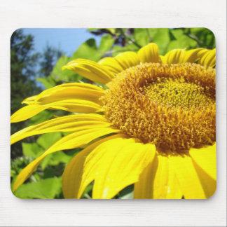 Flor amarilla brillante de Sun del mousepad del gi Alfombrillas De Ratón