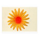 Flor amarilla brillante postal