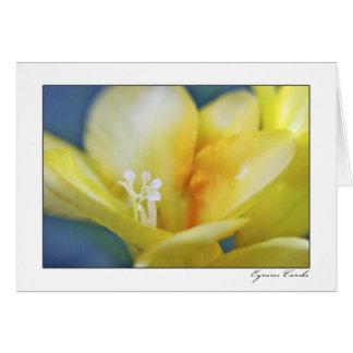 Flor amarilla con el áfido tarjeta de felicitación