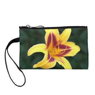 Flor amarilla con rojo, Hemerocallis del Daylily: