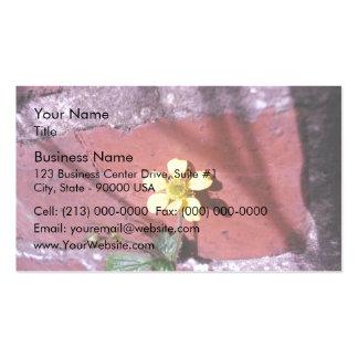 Flor amarilla de la mala hierba tarjetas de visita