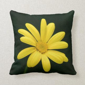 Flor amarilla de la margarita almohadas