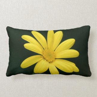 Flor amarilla de la margarita cojines