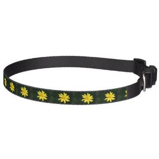 Flor amarilla de la margarita collares de perro